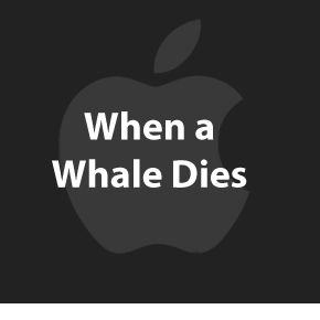 What happens when a whale dies.
